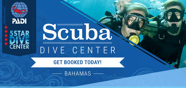 Bahamas Dive Center