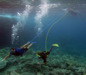 Diving with Compressed Air Supplied for Surface