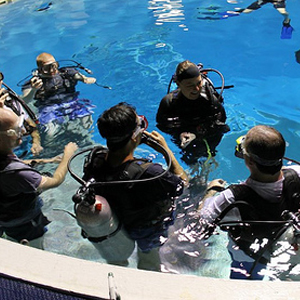 Resort Course Dives in Freeport